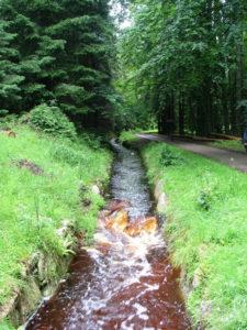 Schwarzenbergscher_Schwemmkanal